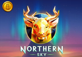 nothern sky logo